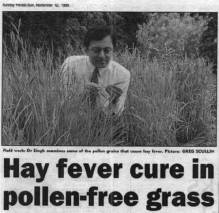 hay-fever